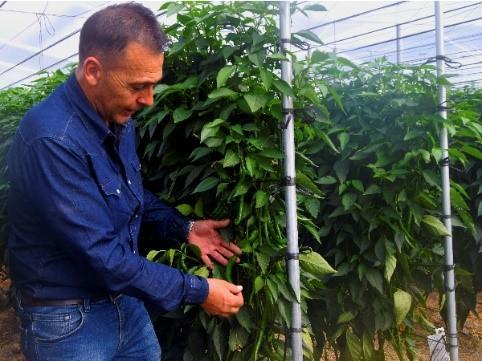 maher programador riego agrícola
